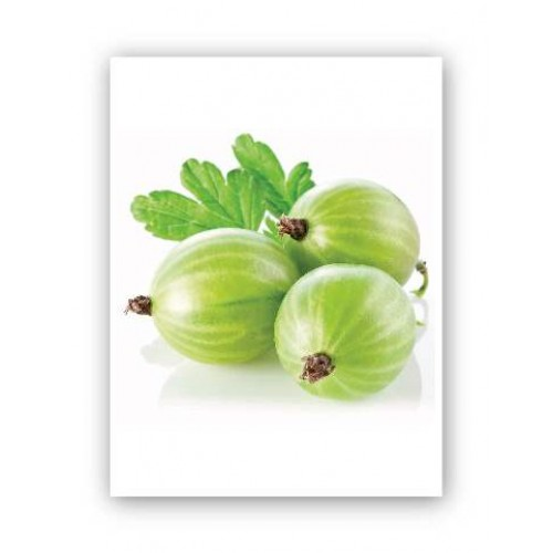 Gooseberries Produce Board