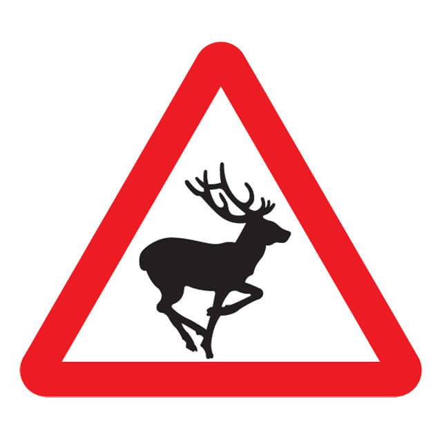 animals wild road sign signs deer animal farm symbol crossing warning pass traffic wildlife test reindeer take shutterstock a628 woodhead